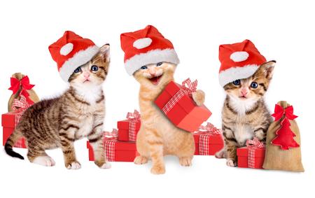 drie jonge kitten met kerst hoeden en giften Stockfoto