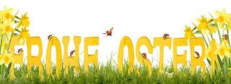 Happy Easter  Fa betűk katicabogár és nárciszok Stock fotó