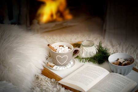 Cup of cocoa, hot chocolate with marshmellows on a tray with book, lantern and fir branch on a sofa or bed with blankets