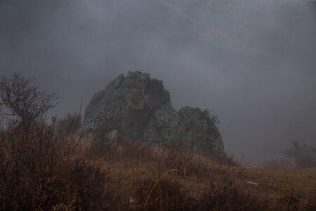 Rocky ledge in the fog in the deep rainy autumn. Ochery vegetation Bush, fallen leaves. Dead grass. Raindrops on dark branches. Cascade of mountain slopes. Gloomy cold morning. Mountain landscape, cloudy season. Wildlife. Stok Fotoğraf - 147580018