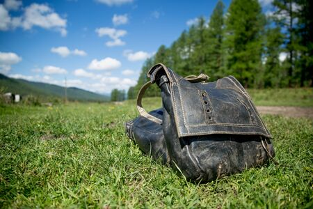 Horse harness lies on green grass near a country road on a background of blue sky with clouds. Leather bags for horses. Colorful attributes of life in harmony with nature. Horse riding on mountain trails. Stok Fotoğraf