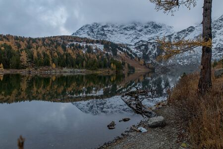 Mirror surface of a crystal clear lake. Colorful autumn forest. A mountain covered with snow. Rocks meet with clouds. Stones are visible in clear water. Old grass, stormy sky. Larch with yellow needles.