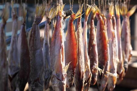 dry fish: Dry fish Stock Photo