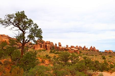 Beautiful landscape in natural colors at Arches National Park in Utah, USA