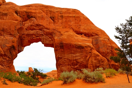 Pine Tree Arch in Arches National Park, Utah, USA