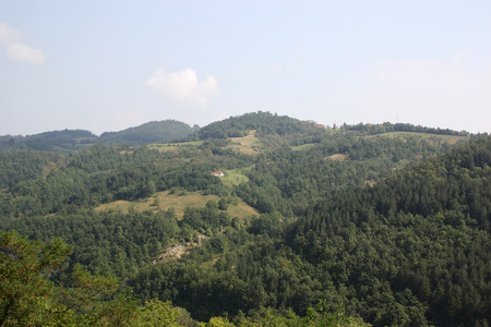 The rural houses on the wooded mountainside