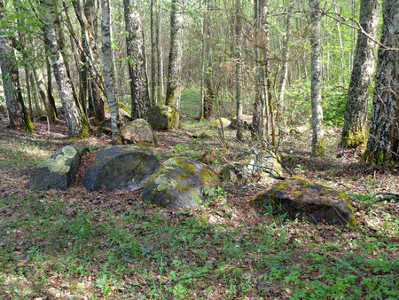 glades: Boulders at the edge of the forest Stock Photo