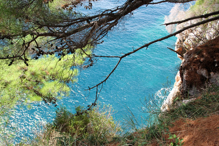 below: The vegetation on the cliff and the sea below Stock Photo