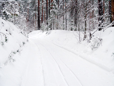 rut: Forest road in the winter season Stock Photo