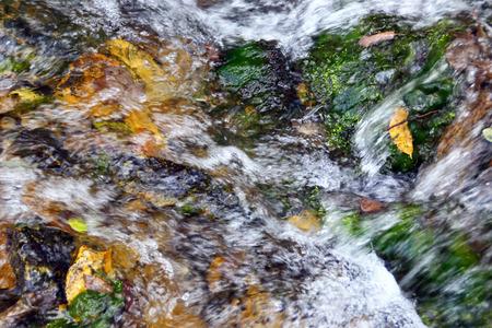 rivulet: natural background