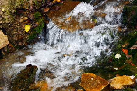 rivulet: stream