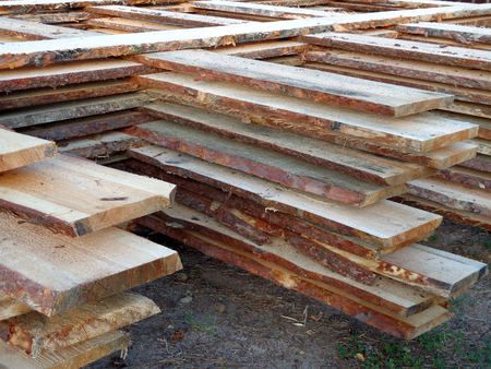 Pile of the boards in the timber shop