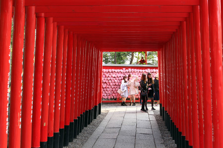 The line of Shinto gates, and girls taking selfie at the end of the tunnel. Taken at Inuyama Shrine, Japan - February 2018