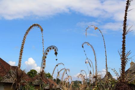 Around Penglipuran village, one iconic traditional neighborhood full of coconut leaves (janur).