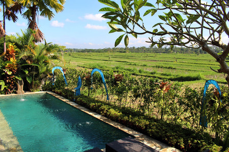A villa within the typical countryside of Balinese village. Taken in Bali, July 2018. Editorial