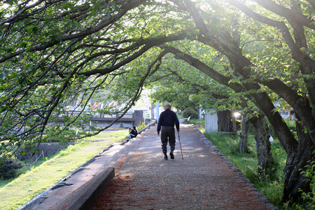 An old man with cane enjoying walk at one park in Beppu. Taken in Oita, April 2019.