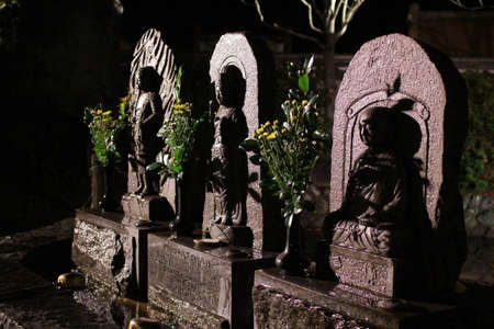 Holy statues at Buddhist Asukadera Temple in Asuka at night. Taken in September. Stock Photo