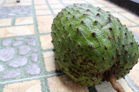 Dark green soursop or sirsak in Indonesia.