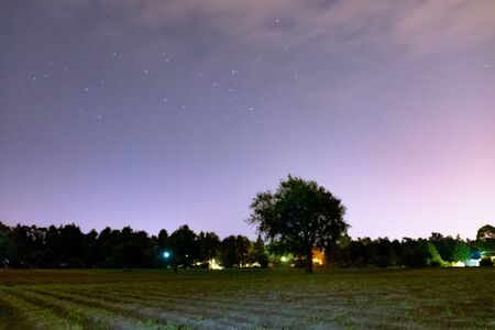 Night scene of farmland, with a central tree. night photography Imagens