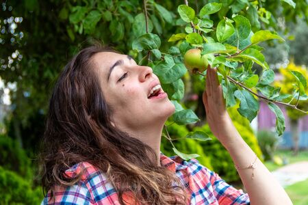 Real woman chopping yellow apples from a leafy tree. farming