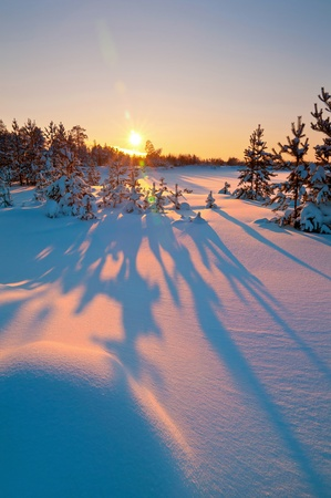 frozen lake: Winter landscape. Beautiful sunset.  Long shadows from the trees in the snow Stock Photo