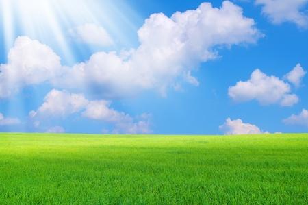 Paisaje colorido. Los rayos del sol iluminan el campo verde brillante.