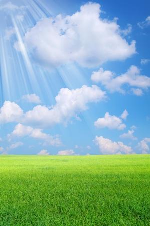 Bunte Landschaft. Die Strahlen der Sonne glänzen auf hellen grünen Feld.