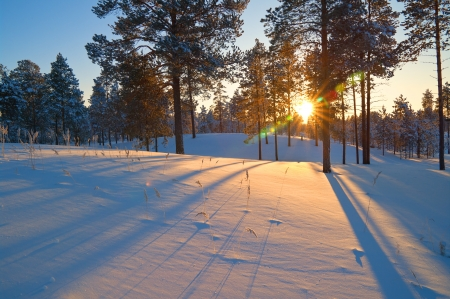 Long shadow cast by the sun on smooth snow.  Beautiful sunset.