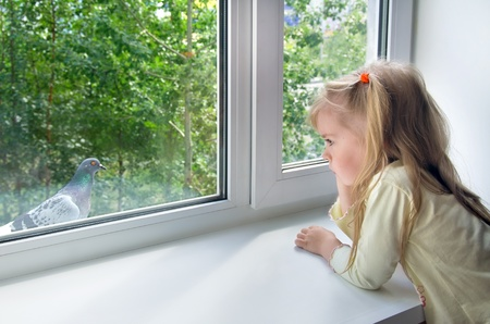 windows: Sad child at the window. A sad little girl looks at a pigeon outside the window Stock Photo