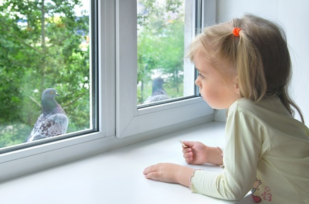 tween girl: Sad child at the window. A sad little girl looks at a pigeon outside the window Stock Photo