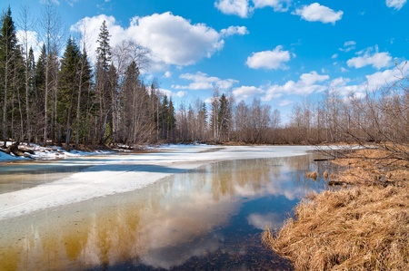 In Siberia, the long-awaited spring. Nature wakes up