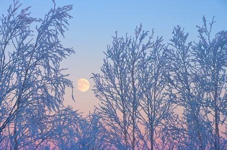 The ascending moon Stock Photo