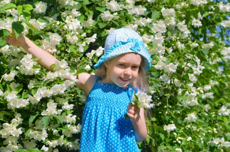 jasmine bush: Little funny girl with blooming jasmine bush  Stock Photo