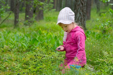 collects: The little girl gathers bilberry in the wood Stock Photo