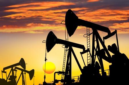 yacimiento petrolero: Aceite de campo