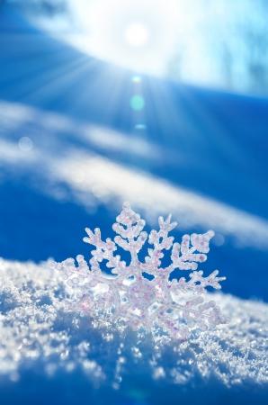 Snowflake Gegenlicht Sonnenuntergang