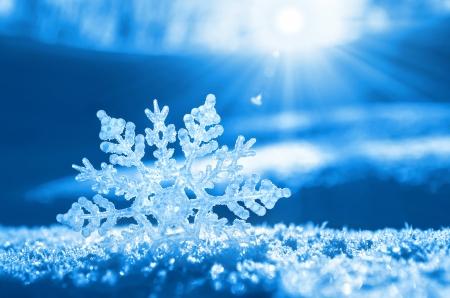 Snowflake light sunset