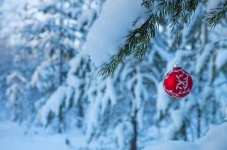 Christmas balls on a branch in a snowy forest
