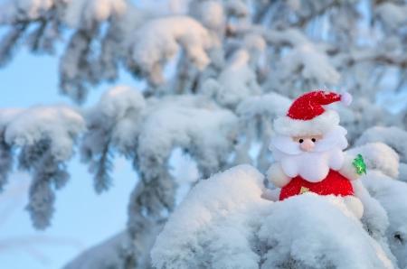 サンタ クロースは、雪に覆われたクリスマス ツリーの分岐上に座っています。