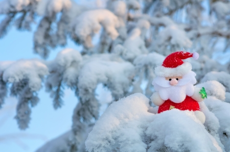 Santa Claus sits on a snow-covered Christmas tree branch