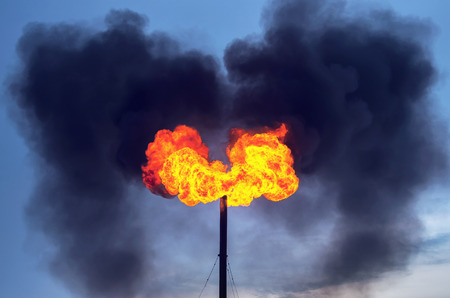 annihilation: Oil Torch