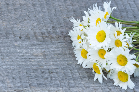 Bouquet of beautiful camomiles on a wooden board photo