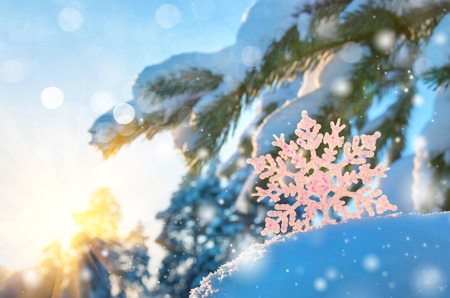 Winter background with snowflakes 写真素材