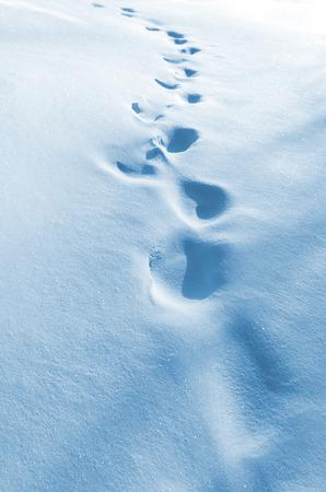 soltería: Las huellas humanas sobre la nieve