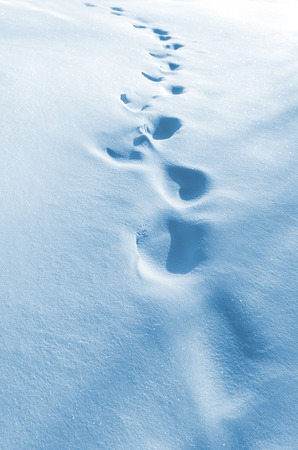frostily: The human traces on the snow