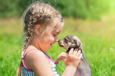 The little girl on a lawn with a puppy in the sunny day
