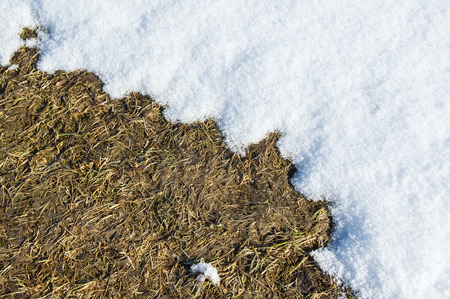 Spring background. The earth which thawed from snow. photo