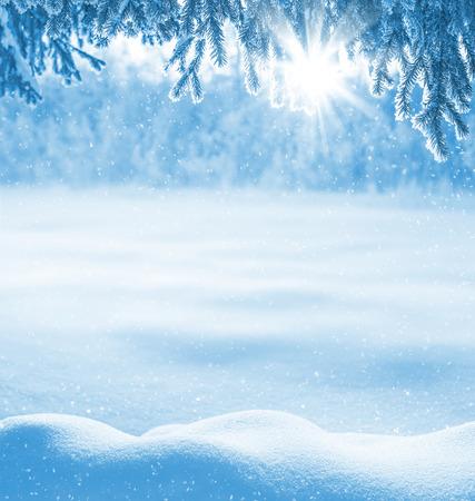 freddo: Sfondo invernale con neve derive e l'albero di Natale di brina
