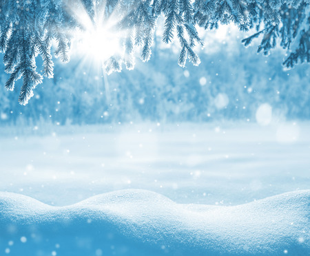 snowdrifts: Winter background with snow-drifts and the christmas tree in frost Stock Photo
