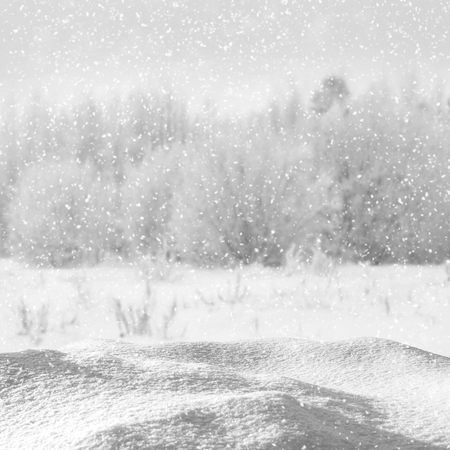 snowdrift: Winter Christmas background with snowdrift against the forest
